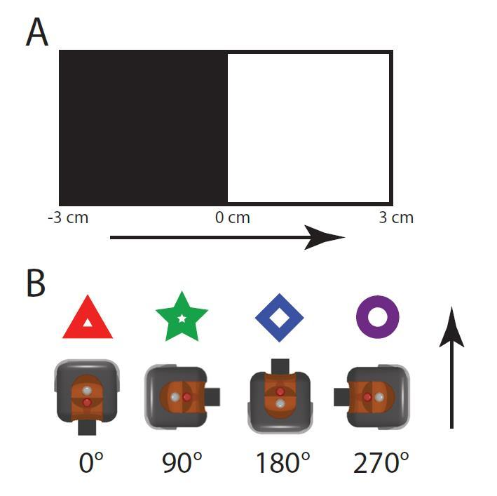 Applications: Signal Detection: oooo Modeling a Robotic Sensor The LEGO light sensor was slowly moved over a black-and-white albedo