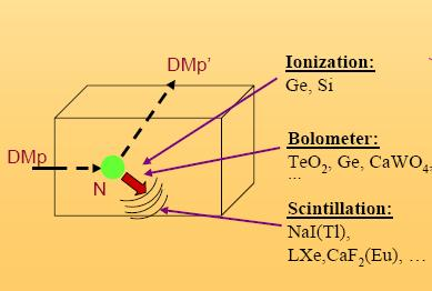 Techniques for Detecting WIMPs Direct: The DM particle interacts in the volume of a detector, colliding with a nucleus, causing the nucleus to recoil and release energy in the detector.