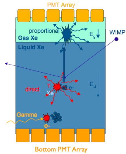 Direct detection experiments Search for WIMP recoils on nuclei Must be reduce background (deep