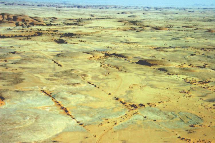 Geomorphology 149 Figure 6.22 Wind abraded surfaces downwind of yardang zone north-east of Al Ula (Photo: author). arise from these observations.