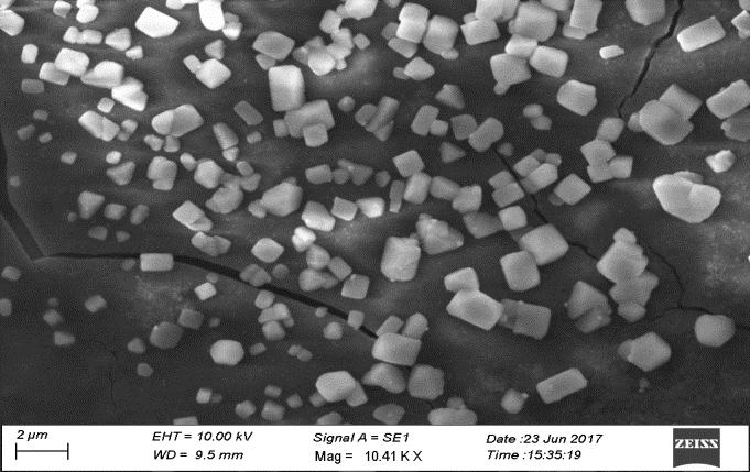 The SEM images are shown in the figure3. The SEM images show clearly the presence of nanoparticles in the nanoscale range 91 170 nanometer.
