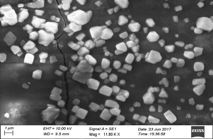 The SEM images show approximately 30 % of particles are in nanoscale while the other exceeds in size and some of the nanoparticles are in various shapes