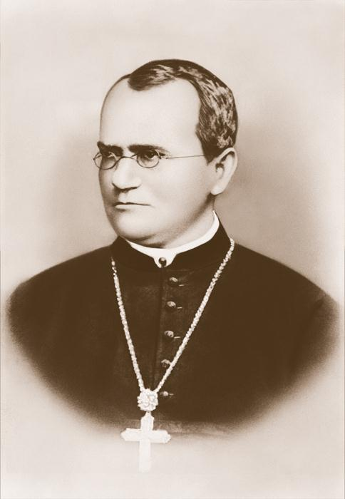 Gregor Mendel Laid the groundwork for genetics traits are distinguishing characteristics
