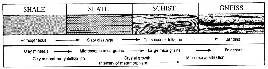 (2) A schist is a rock characterized by the parallel alignment of mica crystals. This planar fabric is called schistosity and generally results from medium-grade metamorphism.