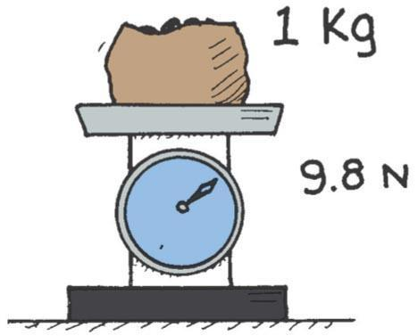 Mass A Measure of Inertia One Kilogram Weighs 9.