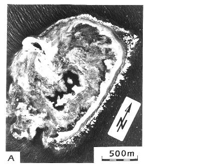 page 279 Photos 1: A) Vertical aerial photograph showing the Maziwi coral reef in 1975.