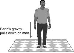 52. In the figure below, the force of gravity is drawn in the picture. This represents Earth s gravity pulling down on the man.