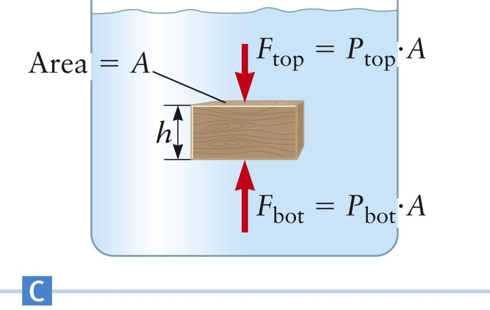 Example: Archimedes Principle, Immersed Object The box is fully immersed in the fluid The buoyant force equals the weight of the