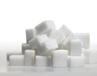 energy from sunlight to make sugars used as