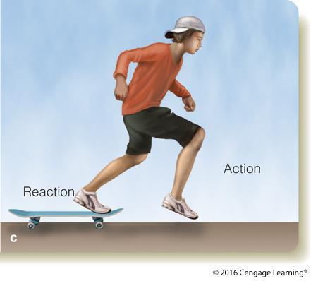 Newton s Third Law of Motion To every action, there is an equal and opposite reaction The