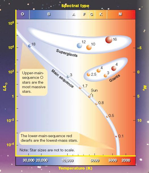 Masses of Stars in the Hertzsprung-Russell Diagram The higher a star s mass, the more luminous (brighter) it is: Masses in units of solar masses L ~ M 3.