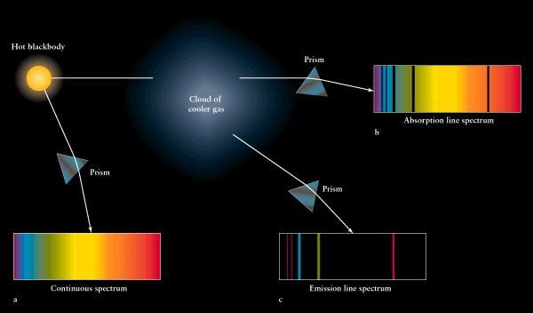 STELLAR EVOLUTION Mass determines a star s temperature, luminosity, and