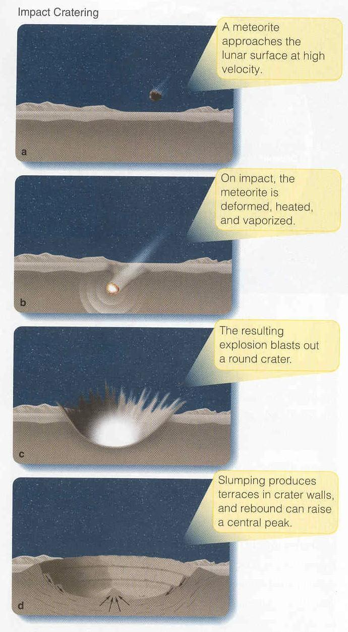 Formation of an impact crater Crater caused by the explosion Impactor is melted, perhaps vaporized by the kinetic energy released Temporary transient crater is round Gravity causes walls to slump