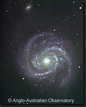Lumpiness of the spiral arms 3.