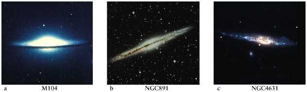 The tightness of a spiral galaxy s arms is correlated