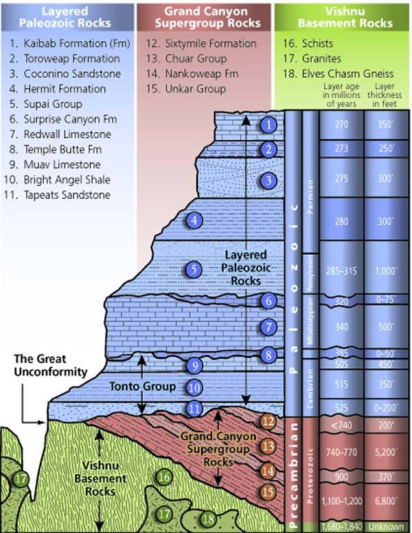 Stratigraphic Section of Grand Canyon Rocks The