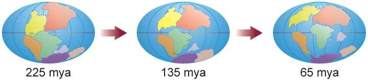 Plate tectonics describes the movement of several large plates that make