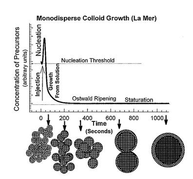the case of the 6 nm particles, was key to the formation of monodisperse nanoparticles.