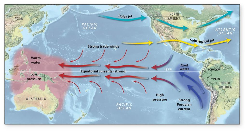 Normal Pacific Conditions Kitchen (2013) Trade Winds push water away from South America and toward Asia Deeper, colder water upwells along South