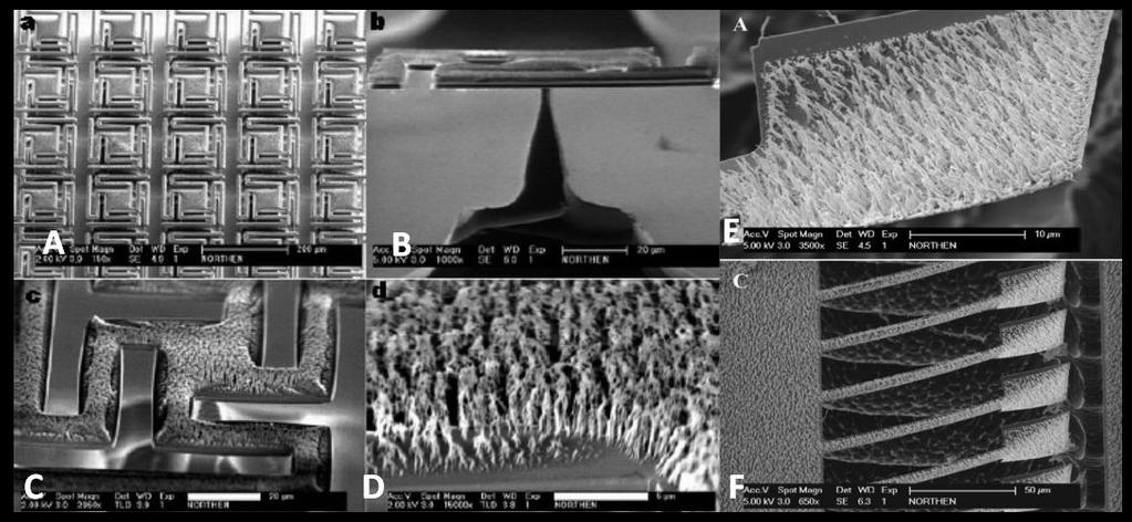MEMS fabrication technique. They attained a significant increase in adhesion over solid organorod covered substrates[61], [62].