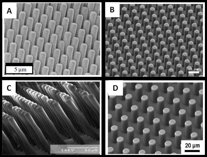 Figure 3-14: PDMS micropillars fabricated through soft lithography of DRIE prepared master-molds from (A) [72], PDMS pillars from SU-8 master-mold from[78] (B), SU-8 micropillars from [84] (C), and