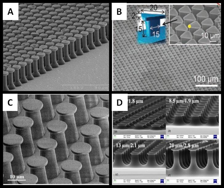 Figure 3-16: Mushroom shape terminated PDMS micropillars, (A) from[73], (B) from[74], (C and D) from [91-93] del Compo and coworkers introduced a novel method of fibre tip fabrication in 2007.
