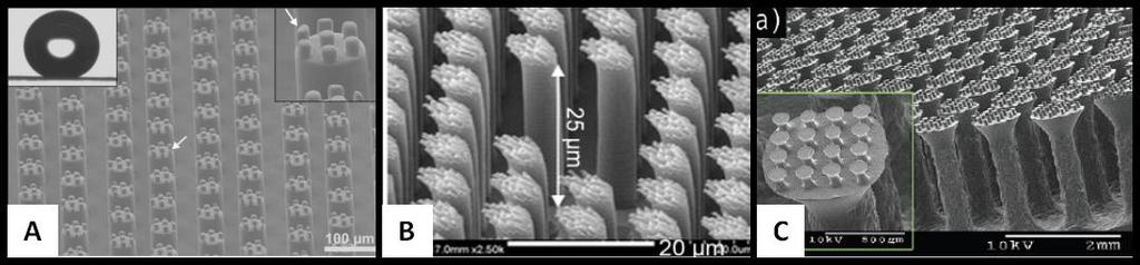 Greiner and coworkers tried to fabricate double level hierarchical micropillars. They fabricated master mold out of SU-8 through a two-step lithography technique.