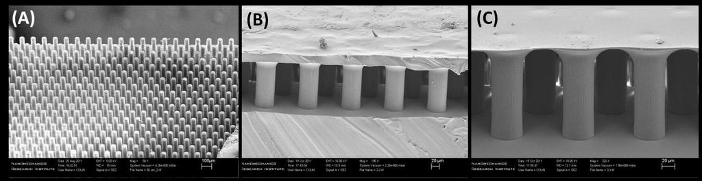 Figure 4-4: Process of soft-molding followed by dipping for fabrication of thin film terminated pillars A series of indentation tests on micropillars was performed by a custom made indentation set-up