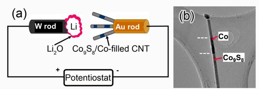 Fig1. (a) Schematic illustration of the experimental setup for in situ TEM. (b) Microstructure of a pristine Co 9 S 8 /Co-filled CNT, consisting of two different regions Co 9 S 8 and Co.