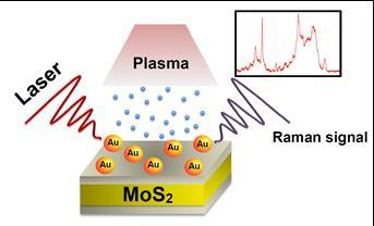 then treated by atmospheric plasma to increase sensitivity and decrease flurouence for surface enhanced Raman scattering (SERS) biodetection.