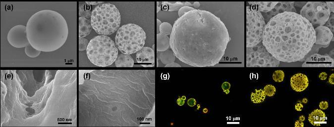 (c), (d) are non-porous microcapsule and porous microcapsule after LbL assembly, respectively. (e), (f) are high magnification of porous microcapsule after LbL assembly.