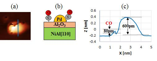 Generally, metal fine particles are predicted easy to adsorb on defects after the Pd atoms deposited on the Al 2O 3/NiAl(110) surface, we found that the Pd NPs were observed as bright spots on the