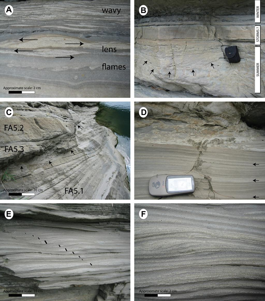60 S. Castelltort et al. / Journal of Asian Earth Sciences 40 (2011) 52 71 Fig. 8. Field photographs of facies from the Meishan section, continued.