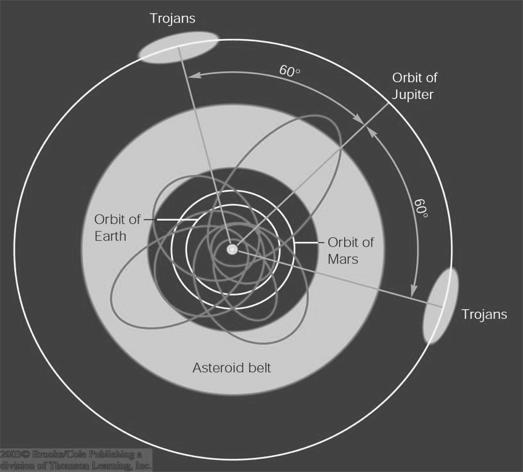 Non-Belt Asteroids Not all asteroids orbit within the asteroid belt. Apollo-Amor Objects: Asteroids with elliptical orbits, reaching into the inner solar system.