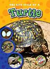 The Life Cycle of a Turtle by Colleen A. Sexton (2011) Includes bibliographical references (p. 23) and index. Introducing turtles! -- The egg stage -- The hatchling stage -- The adult stage.