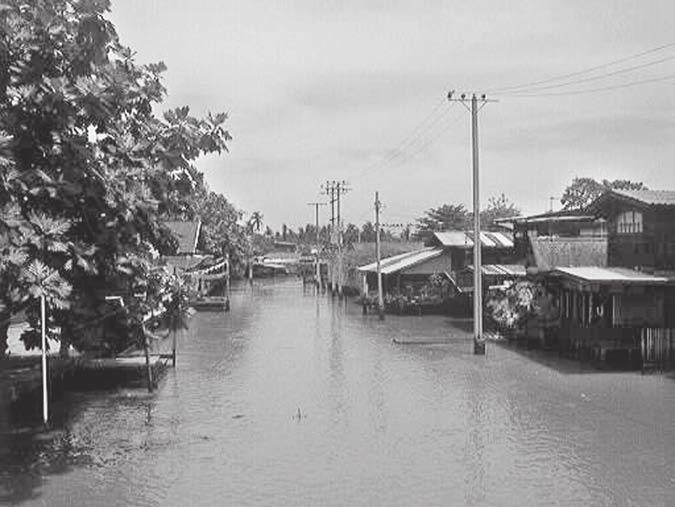 ) along the khlongs in (a) Nonthaburi; ( b)