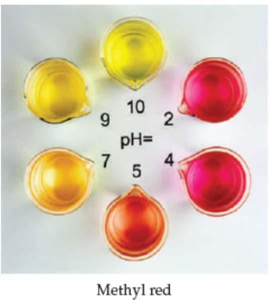 measurements; an indicator is one color in its acid form and another