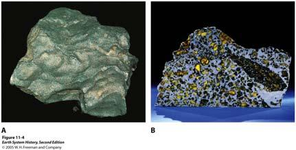 A. Stony meteorite ultramafic in composition, olivine-rich