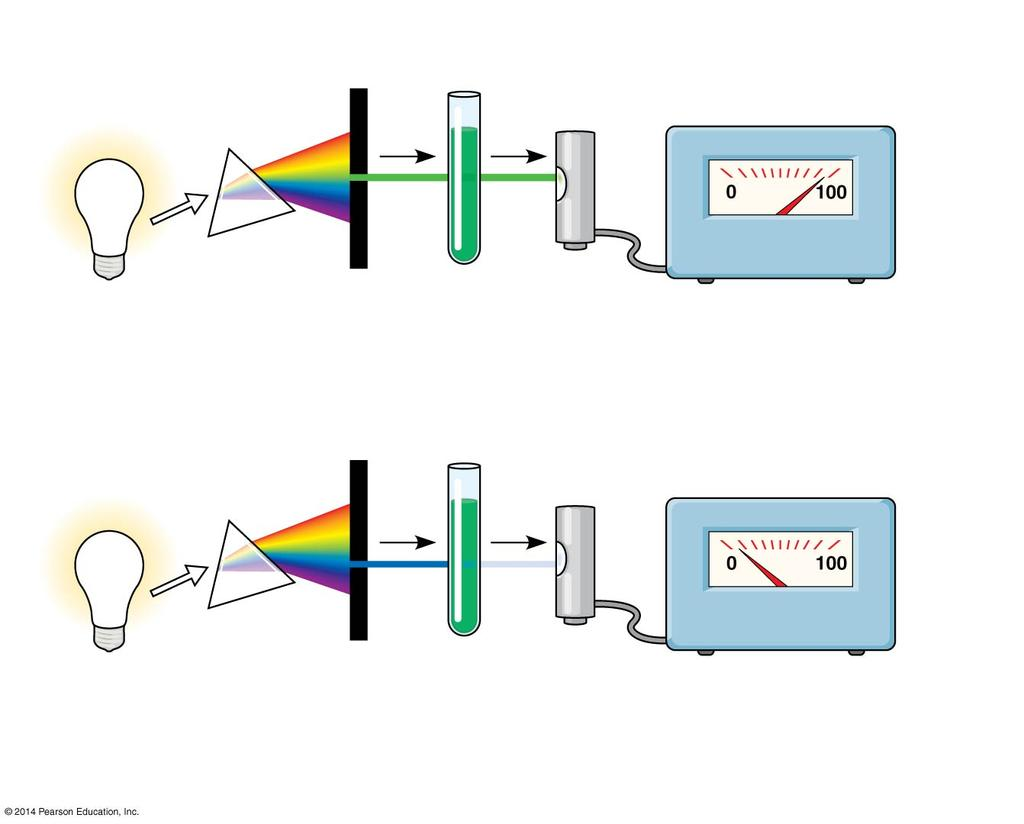 Figure 10.9 White light Refracting prism Chlorophyll solution 2 3 Photoelectric tube Galvanometer 1 4 Slit moves to pass light of selected wavelength.