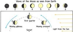 More is known about the Moon than any other celestial body Diameter about one quarter that of