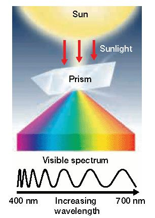 Section 2 Photosynthesis Stage One: Absorption of Light Energy Sunlight contains a mixture of all the wavelengths