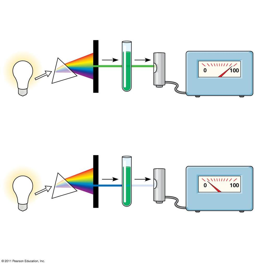 Figure 10.9 TECHNIQUE White light Refracting prism Chlorophyll solution Photoelectric tube Galvanometer Slit moves to pass light of selected wavelength.