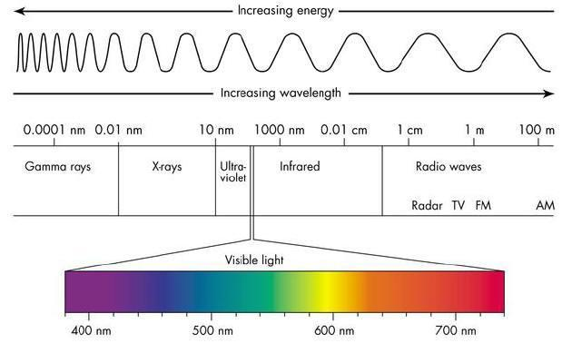 Light Light travels in waves. Sunlight contains all of the wavelengths of visible light.