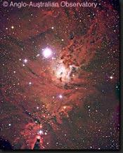 Stellar Associations Stellar associations have very young stars and are often obscured by interstellar dust Most are
