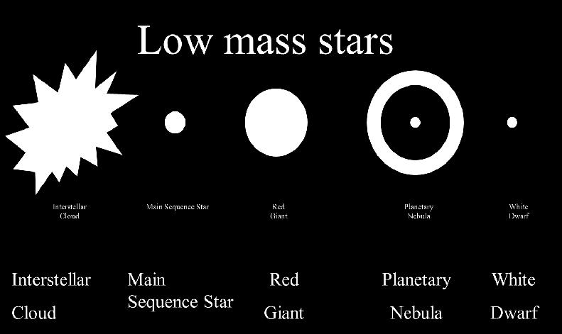 What have we learned? How is the Luminosity of a star related to its temperature and size?