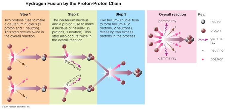 The proton proton chain is how hydrogen fuses