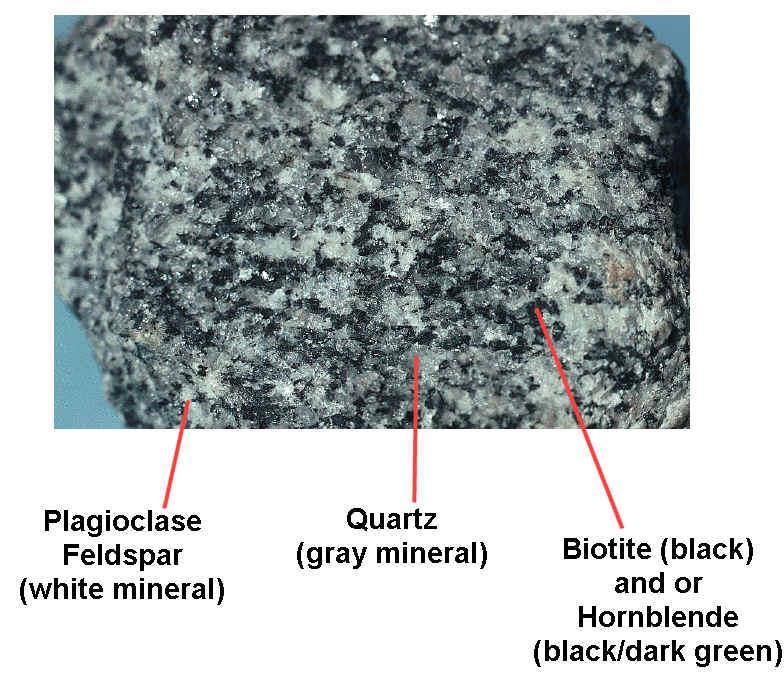 1. Coarse-Grained Igneous Rock a.