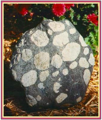 3. Other Igneous Rock Textures a.