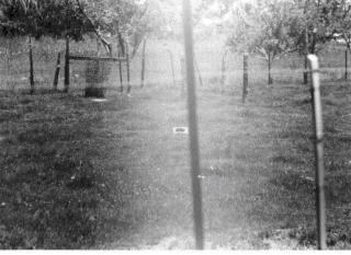 The UFO is said to have landed by the cinder block in the center of the field. And some of the things that Roach said were obviously derived from the Llanca abduction.