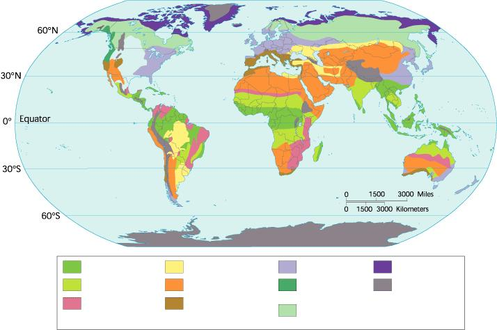 Figure 4-11 The World s Major Land Biomes Section 4-3 Tropical rain forest Temperate grassland Temperate forest Tundra Tropical dry
